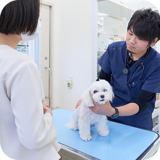 予防接種希望の方へ